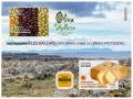 12. Sello HB Gastronomia Baleares 2021