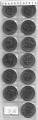Serie Monedas Transnistria (13 Valores). 2016 S/C SIGNOS ZODIACO