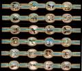 Serie Vitolas Stompkop. Estaciones Invierno Azul. 24 Vitolas