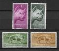 Serie de sellos Sahara español nº 142/45 (**)